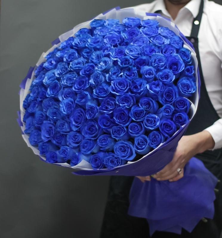 сожалению, огромные букеты синих роз картинки третьего класса ходил